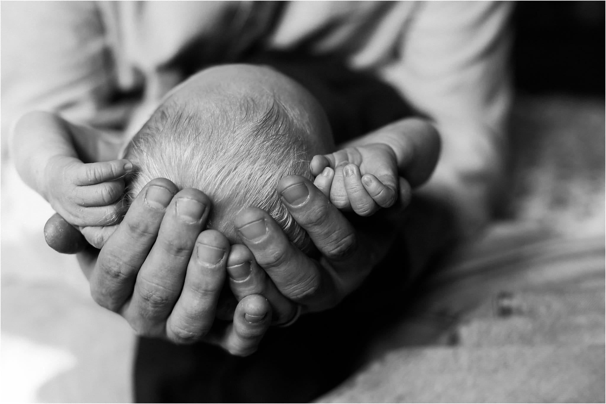 pittsburgh lifestyle newborn photography