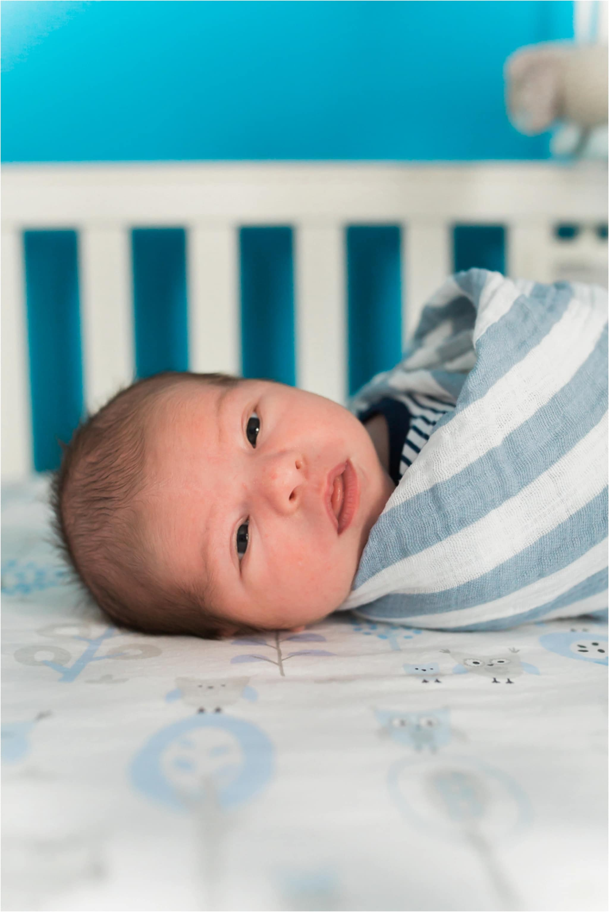 Newborn Photography Pittsburgh