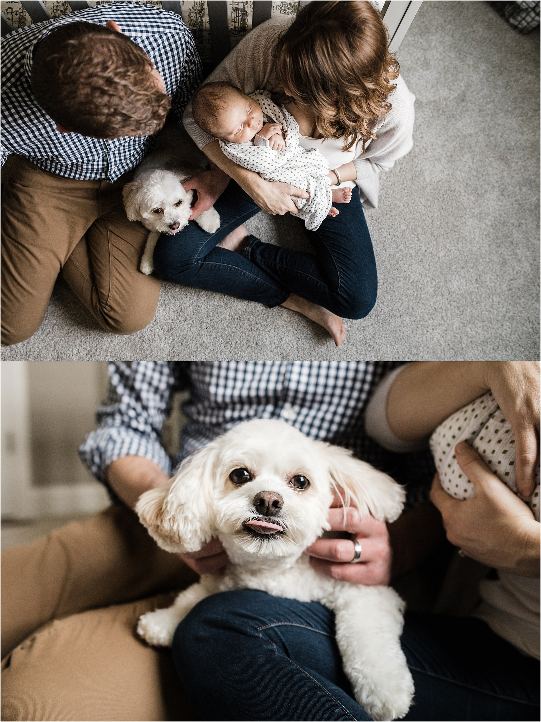 parents holding family dog and newborn baby