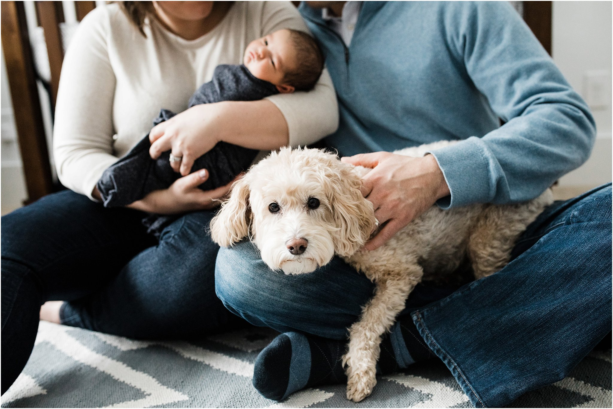 family dog at newborn session