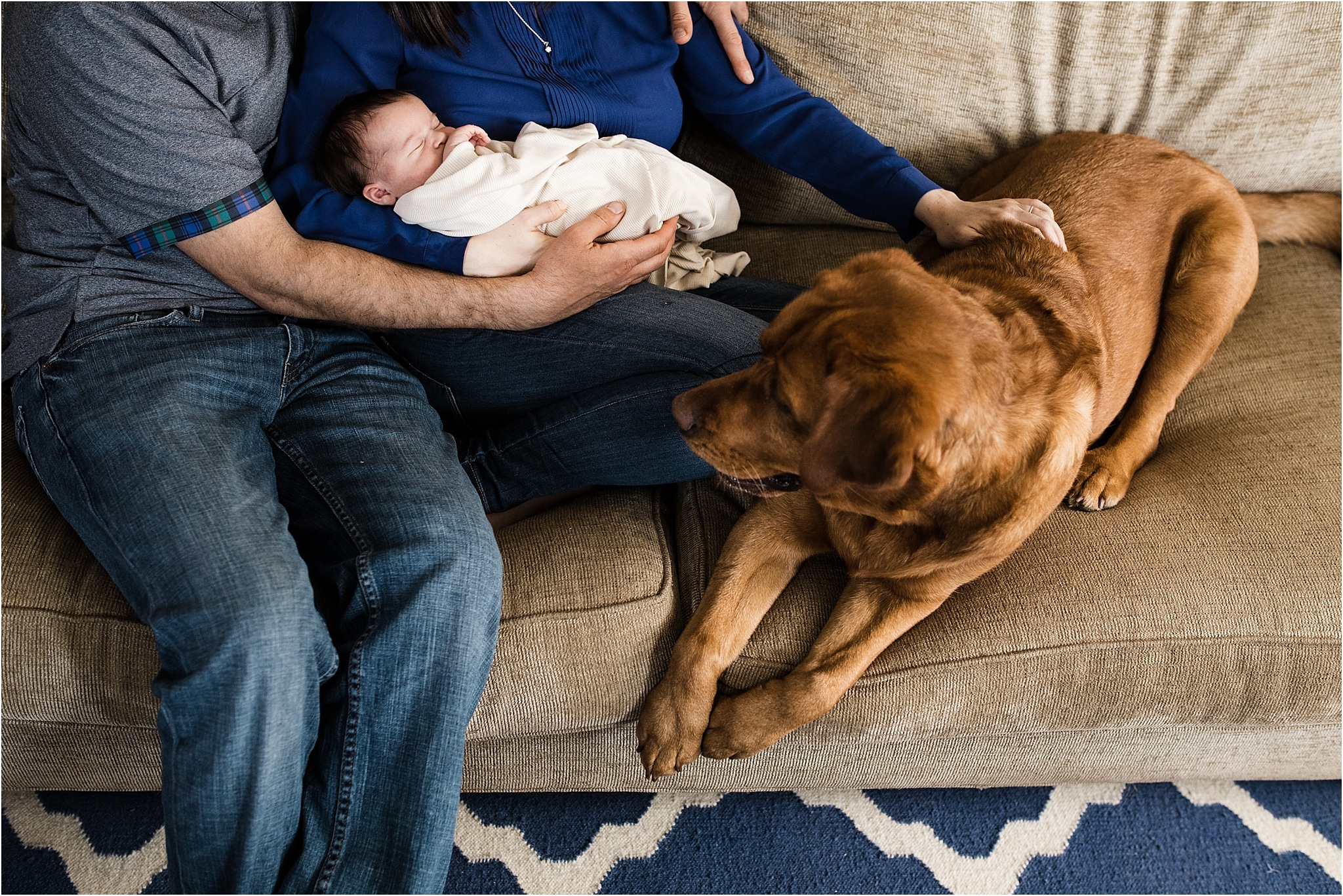 natural newborn photos at home with family dog