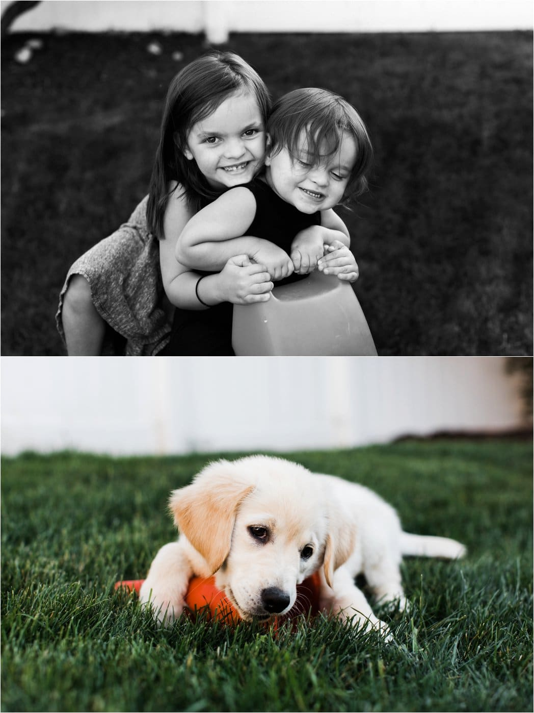 childhood and puppy portraits