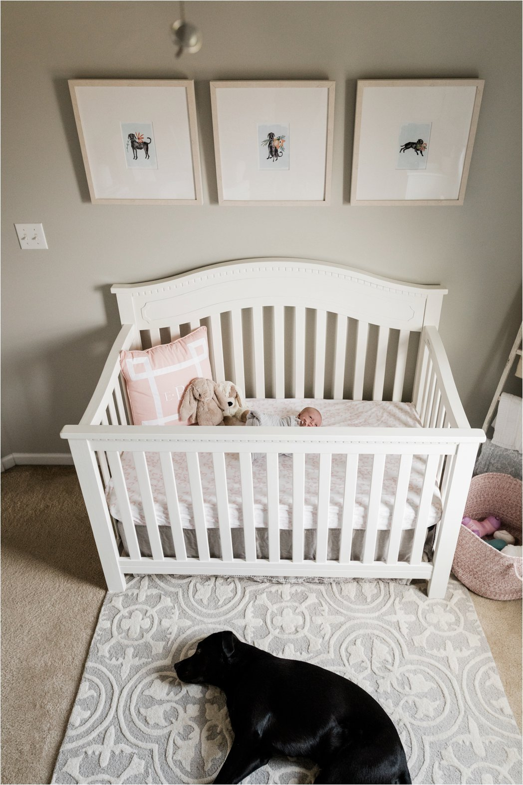 black lab sleeping outside crib with newborn baby girl