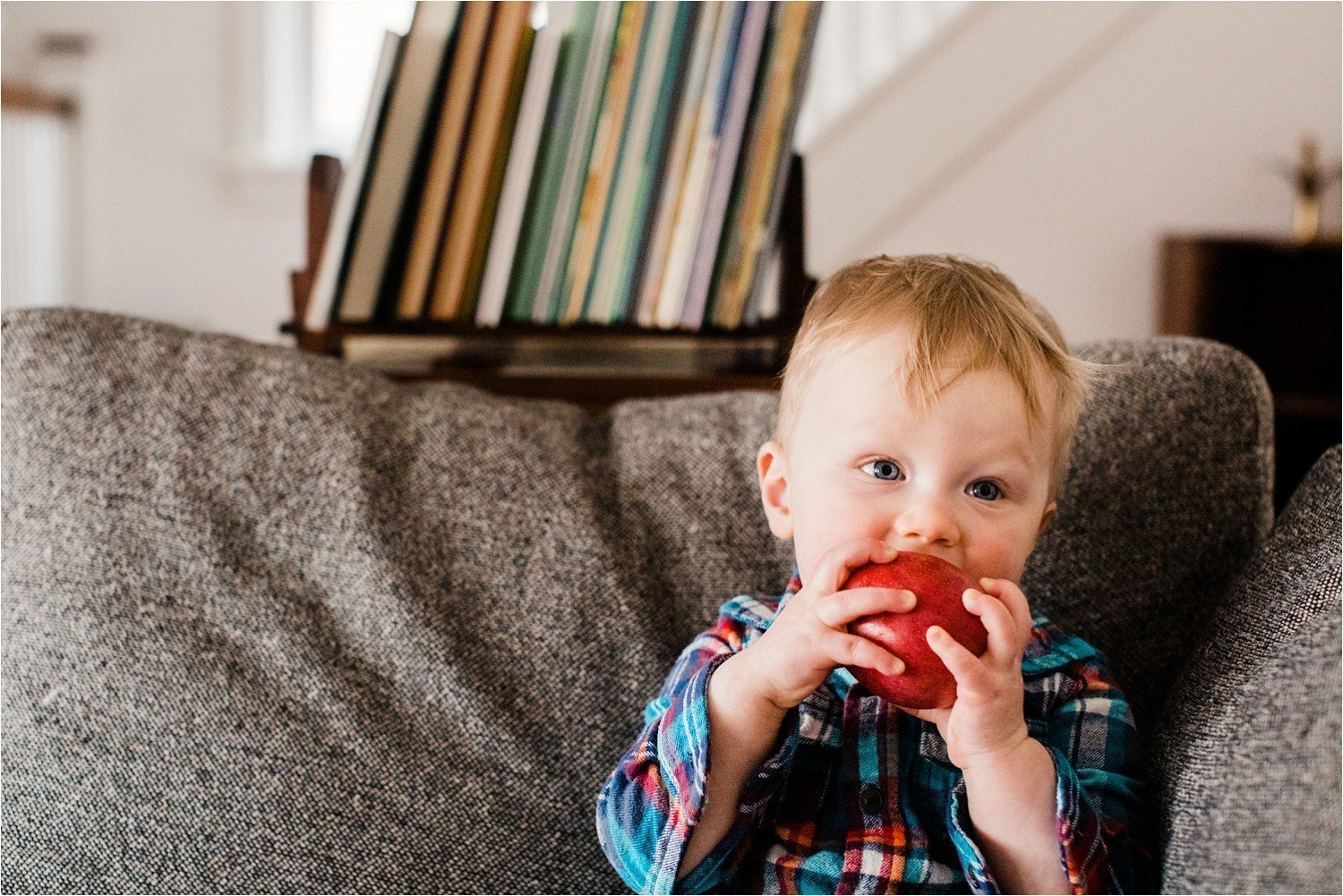 portrait of toddler eating an apple