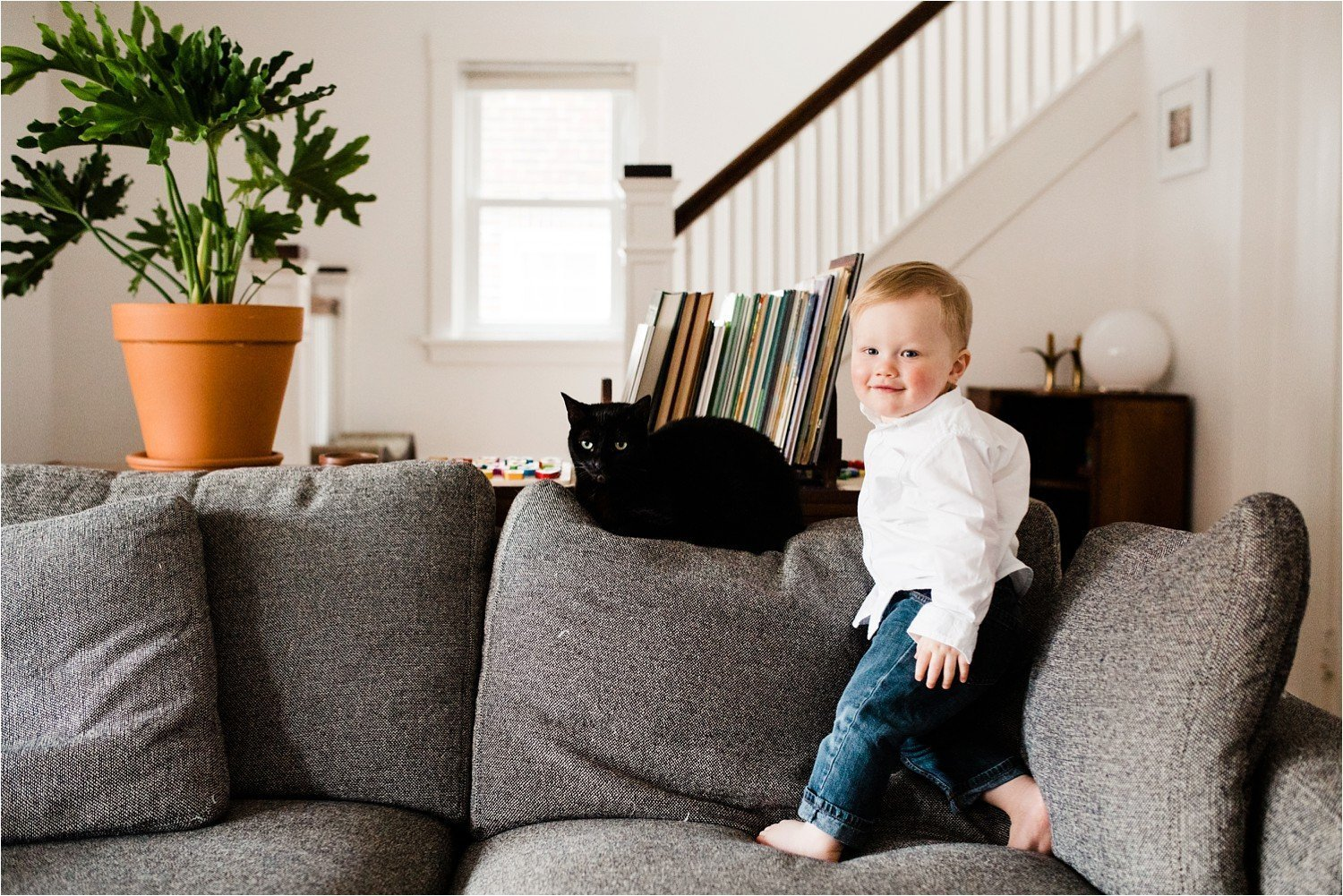 Family photos at home of toddler and cat in living room