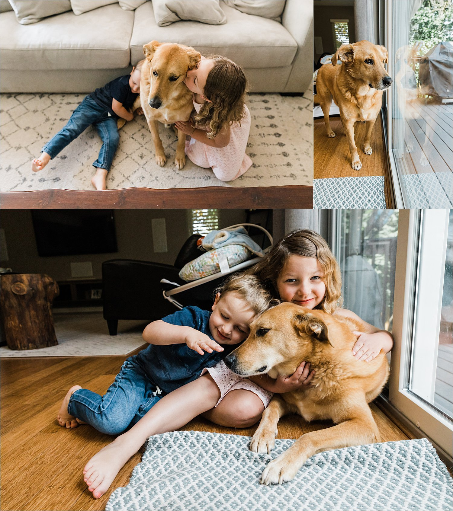 family dog smothered in older sibling love at family newborn session